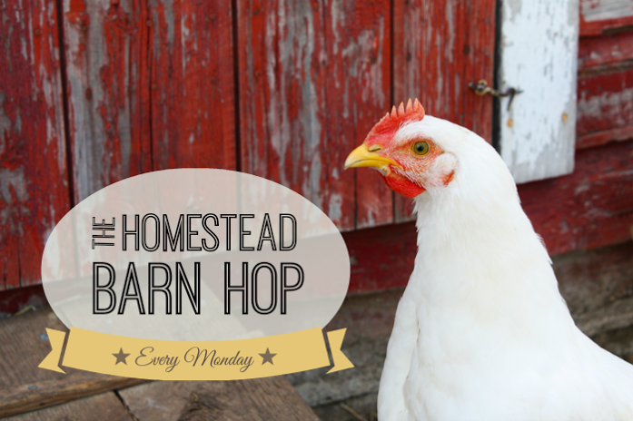 Homestead-Barn-Hop-NEW (1)