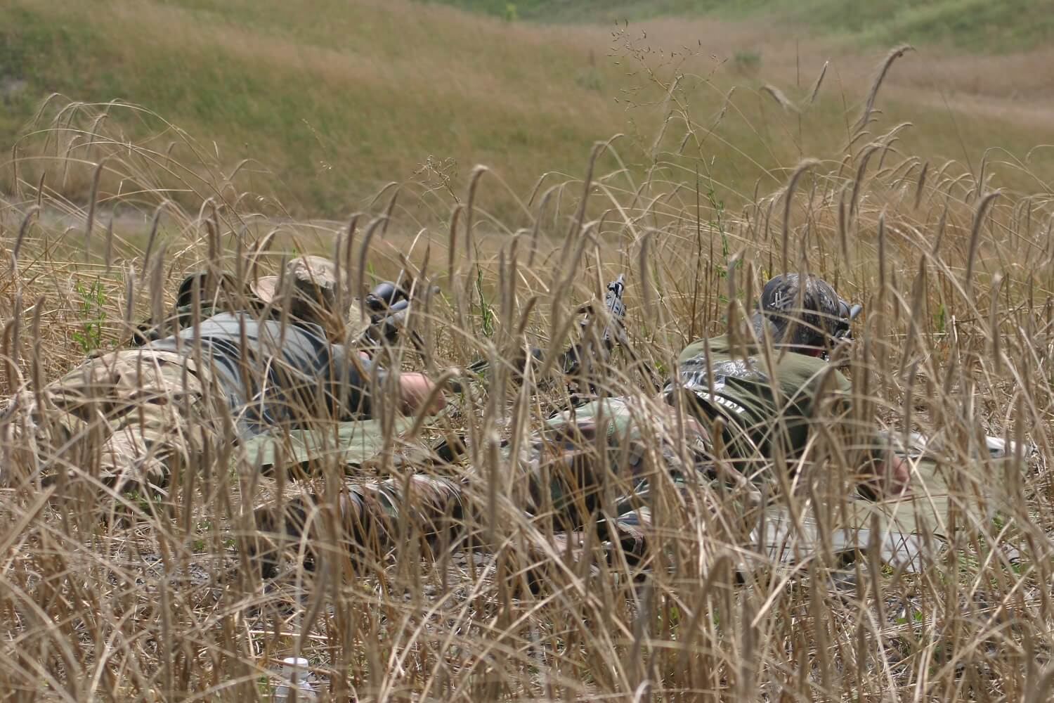 Rifle in the grass
